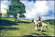horseback riding on st. croix